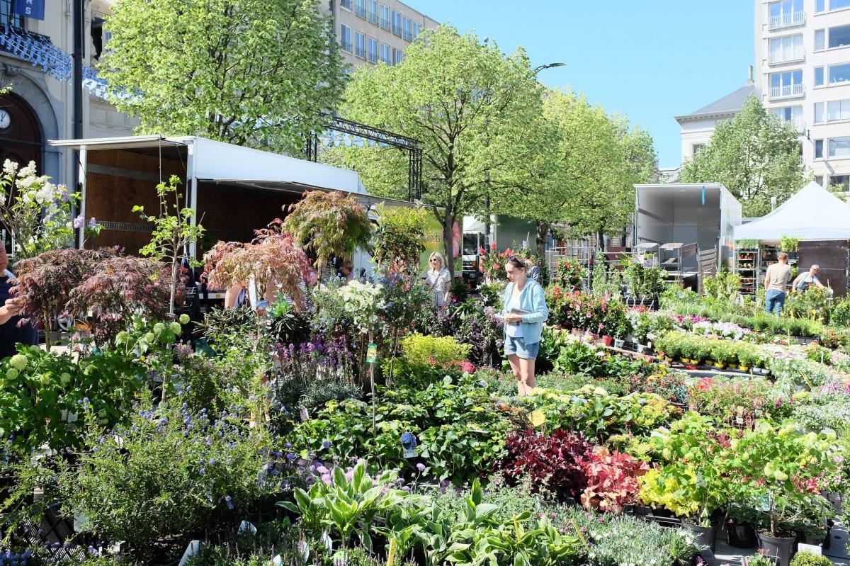 Ghent Flower market
