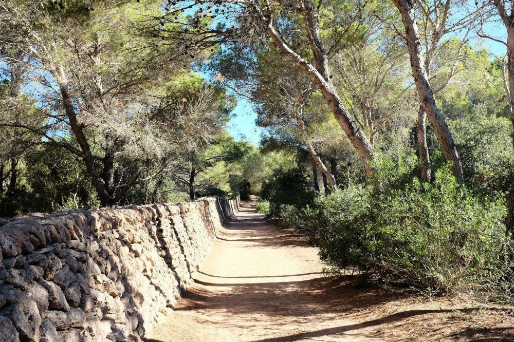Camí de Cavalls-sentier-Minorque-randonnée-côte