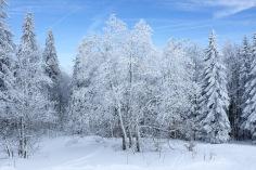 Jura-Mont d'Or-Haut Doubs-montagne-randonnée-paysage-neige