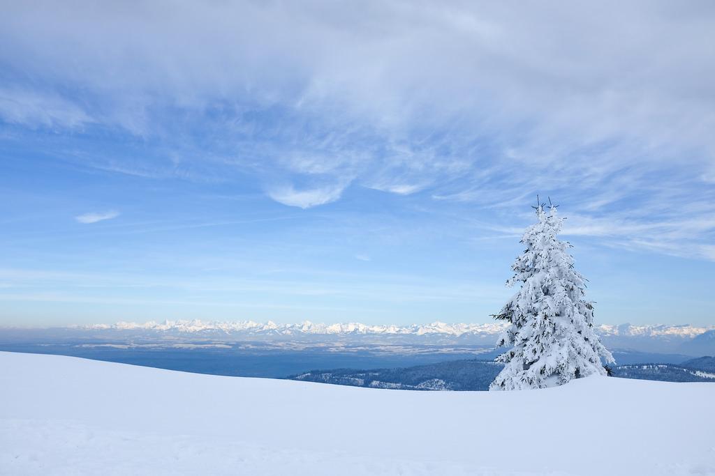 Jura-alpes-montagne-hiver-sapin-neige