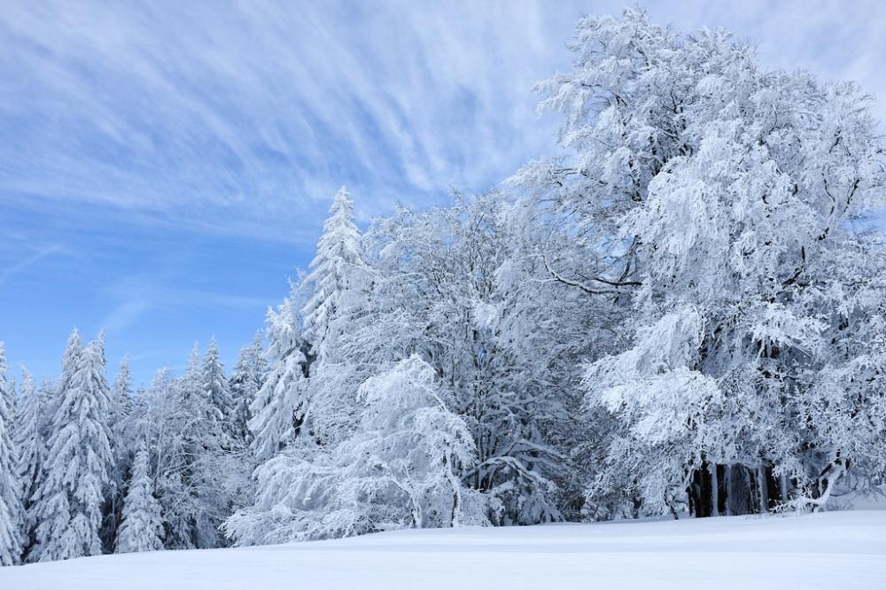 Jura-paysage-neige-sapins-randonnée-crêtes-montagne