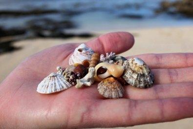 Ballyconneely-Plage-corail-côte ouest-Wild Atlantic Way