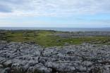 Burren-Comté de Clare-roche-calcaire-désert