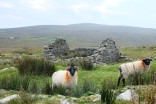 Achill Island-comté de Mayo-Mato-Irlande-Slievemore-village-tourbière