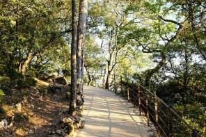 6 kilomètres de promenade au cœur des Jardins de Marqueyssac
