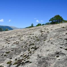 Au sommet de la randonnée des grès d'Annot se trouve cet immense plateau de roche