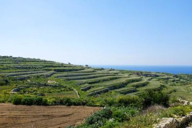 L'île de Gozo et son ambiance rurale