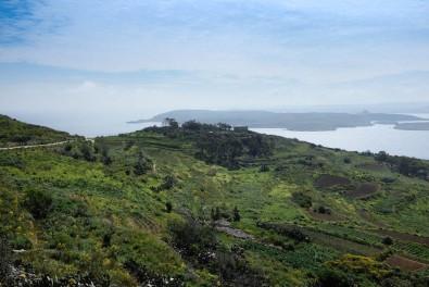 Des collines verdoyantes face à la mer