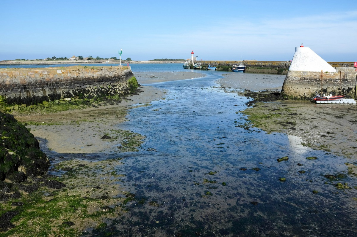 Cotentin Saint Vaast la Hougue