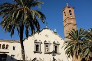 Une église et une tour-clocher avec un palmier devant