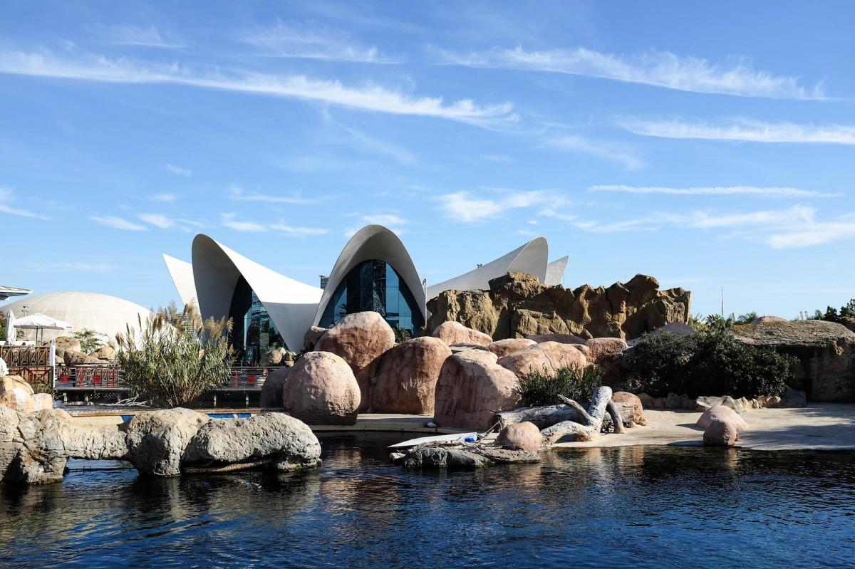 Valencia Oceanografic aquarium