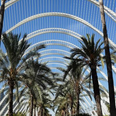 Des palmiers sous une arche blanche grillagée au style moderne et aéré