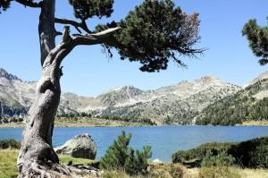Le superbe lac d'Aumar au pieds des montagnes du Néouvielle