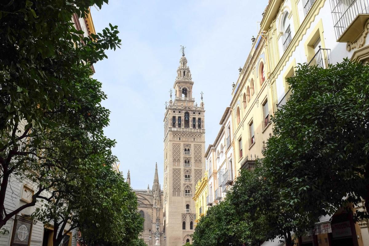 seville catedral giralda