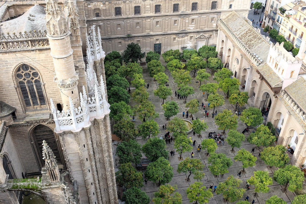 seville cathedrale orangers