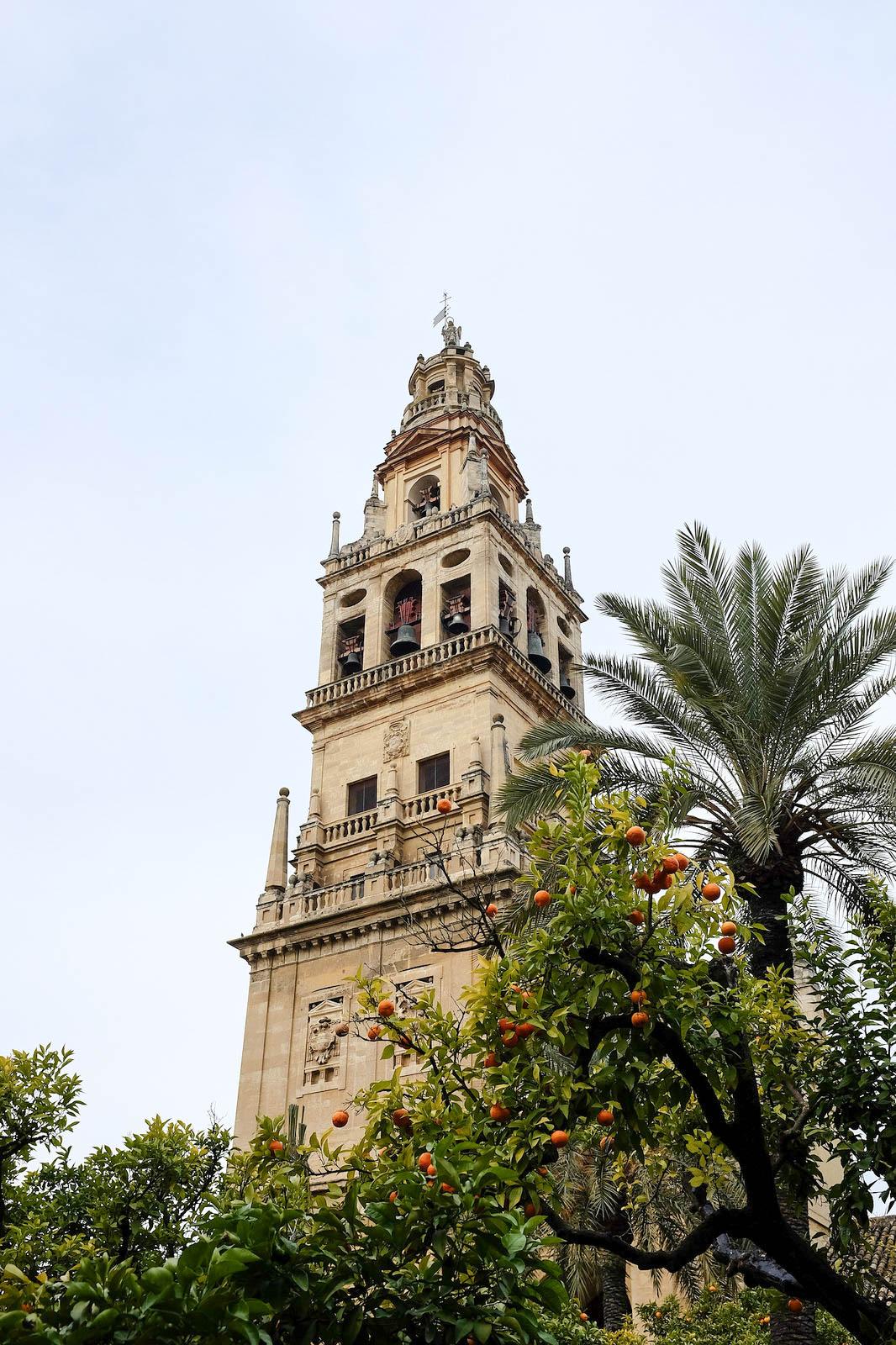 Cordoue mezquita