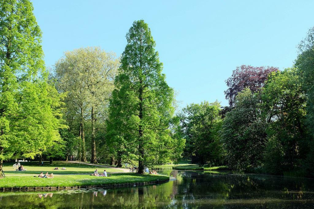 Het park rotterdam