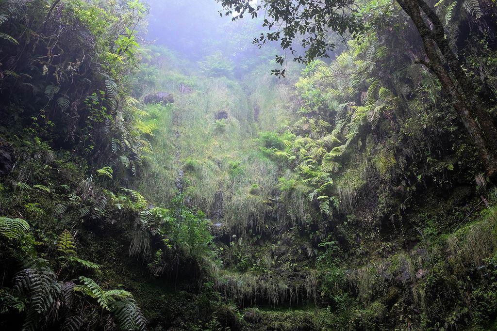 La randonnée du chaudron vert