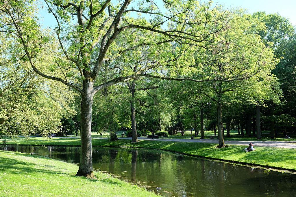 Rotterdam het park