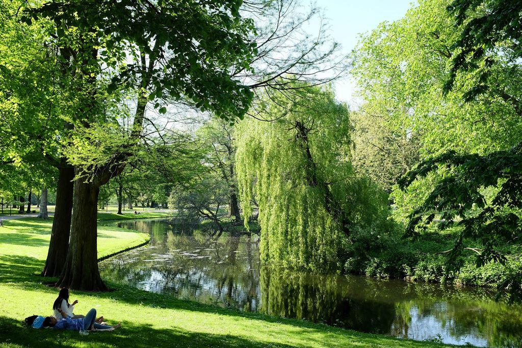 rotterdam park